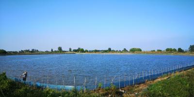 以防为主 防治结合 | 夏季水产养殖科学用药措施