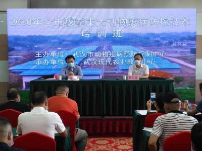湖北:武汉市农业部门提早部署秋季种养防控
