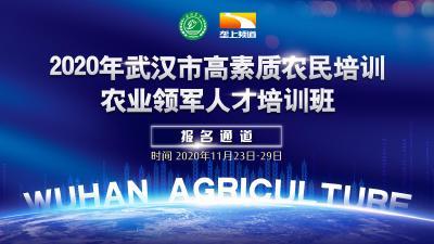 免费|2020年武汉市农业领军人才培训班招生,60个名额等你来!