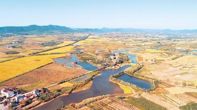 屈家岭发现长江中游最早旱作物粟遗存 距今约5600年至5300年