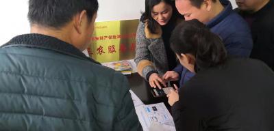 武汉市新洲区:足不出户学电商 在线培训有实效
