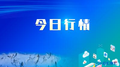 2021年2月26日 行情|湖北省主要水产品价格明细