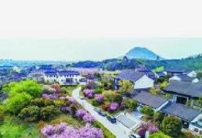 武汉市社打造一批重大乡村振兴项目