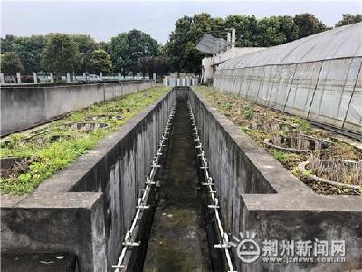 气象为农 湖北省稻渔种养气象服务中心在荆揭牌
