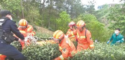 竹溪采茶男子跌入百米深山谷 被困两小时后获救