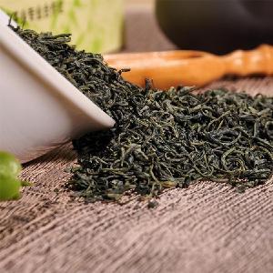 自营出口破零 五峰百吨绿茶销中亚
