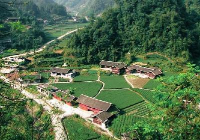 """美景变""""钱""""景 湖北17.78万贫困人口靠旅游脱贫"""