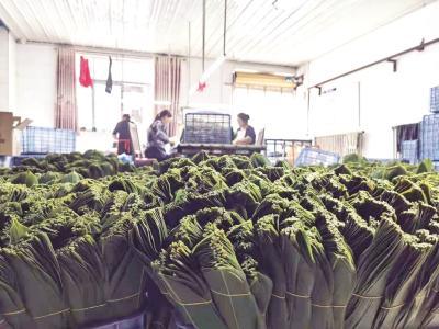 天然生长在深山 片片都是金叶子 鹤峰箬叶大娘一年收入十余万
