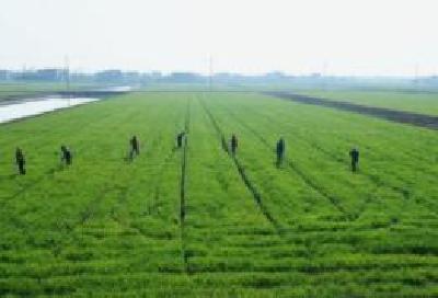 全国高标准农田建设技术培训班在荆州开班