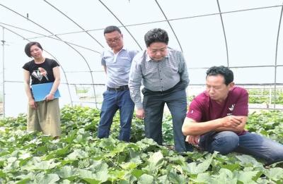上半年荆州农业农村系统引进亿元以上涉农项目35个