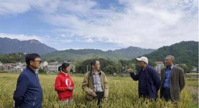 湖北220余名新农人为河南灾区捐款10万元
