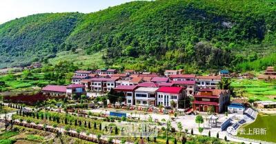 """阳新县港下村: 不一样的""""靠山吃山"""""""