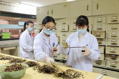 湖北省新版新冠肺炎疫情防控中医药诊疗方案出炉