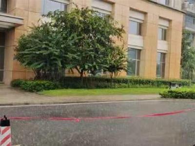 暴雨还在下,大风又南下,周六鄂南仍有较强降雨