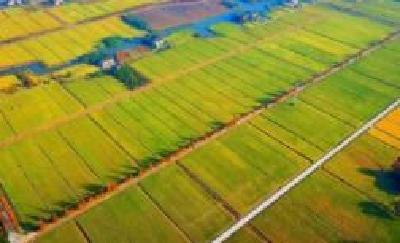 湖北建设3700万亩高标准农田