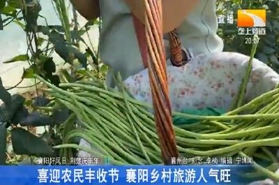 喜迎农民丰收节 襄阳乡村旅游人气旺