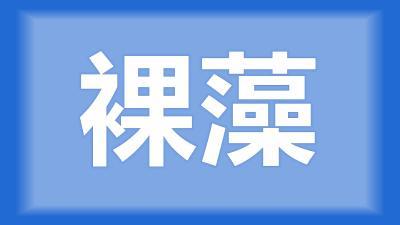 荆州市李师傅:水面呈黄绿色,还有一层气泡,应该怎么处理?