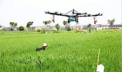"""农业插上""""科技""""翅膀 襄州全力推进农业现代化"""