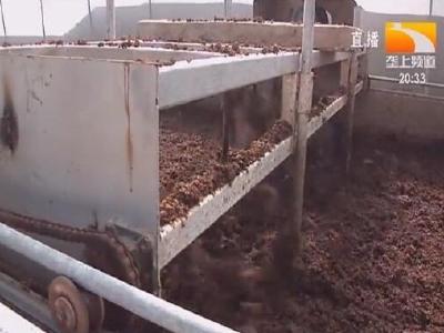 打通大循环 养殖废弃物资源化利用变废为宝