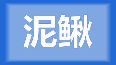 黄陂区胡师傅:泥鳅一般喂什么饲料?消毒药一般用量多少?