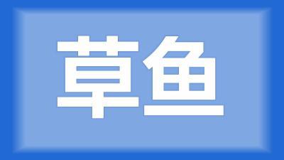 枝江市刘师傅:草鱼吃料的时候,老是一跳一跳是什么原因?