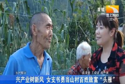 """兴产业树新风 女支书勇当山村百姓致富""""头雁"""""""